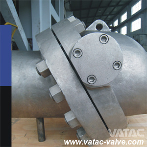 Cast Steel Ss304/Ss316 Tilted Disc Wafer Check Valve pictures & photos