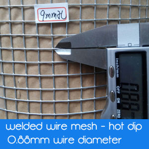 Galvanized Welded Square Mesh Wire Mesh - Hot Dipped Galvanized After Welding pictures & photos