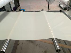 Good Quality Silicone Rubber Sheet, Silicone Sheets, Silicone Sheeting Made with 100% Virgin Silicone pictures & photos