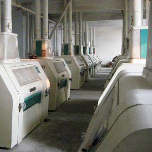 Wheat Flour Milling Machine Grain Flour Milling Price (6FTF) pictures & photos