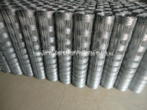 Galvanized Chainlink Fence Idiamond Wire Mesh, High Security Galvanized Wire Mesh, Galvanized Wire Netting pictures & photos