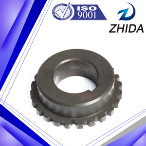 Sintered Iron Spur Gear with SGS Certificate pictures & photos