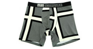 95%Cotton/5%Pendex Men Underwear Boxers Brief Fashion for 253-Grey pictures & photos