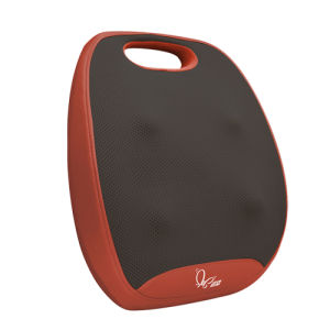 Back Caring Massage Cushion Body Massager pictures & photos