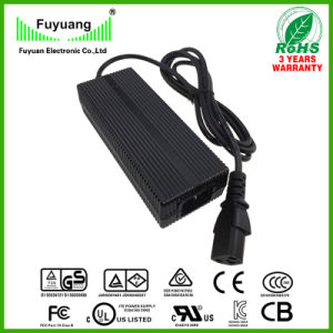 Smart Charger for 7 Cell Li-ion Battery 29.4V3a (FY3003000) pictures & photos