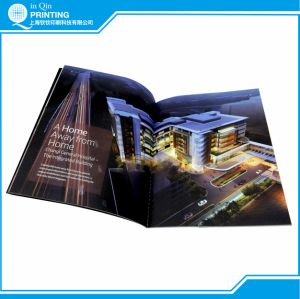 Print Full Color A4 Brochure in Shanghai China pictures & photos
