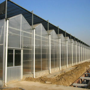 14mm Polycarbonate Four Wall Hollow Sheet for Greenhouse pictures & photos