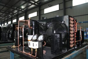 Ce-Tecumeh Compressor Unit pictures & photos