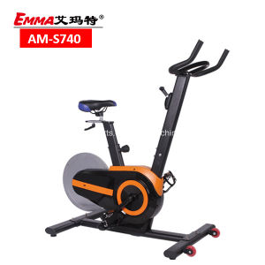 Rear Flywheel Fitness Magnetic Bike (S740) pictures & photos