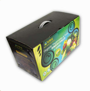 Corrugated Fruitage Box with Plastic Handle