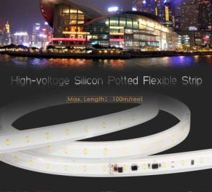 High-Voltage 2835 PU Glue Potted Flexible LED Strip Lighting 50 Meters with Ce RoHS pictures & photos