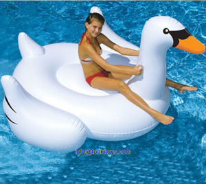 White Inflatable Goose Boat for Water Game (TK-052) pictures & photos