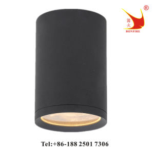2016 Hot Selling Outdoor Ceiling Lamp, IP54