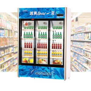 932L Vertical Below Unit Sliding Multi-Door Showcase pictures & photos
