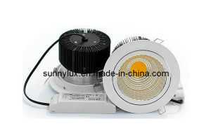 20W LED Downlight with 2 Years Warranty pictures & photos