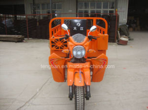 China Factory Supplier Smart Three Wheel Motorcycle pictures & photos