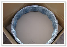 Hot Dipped Galvanized Razor Wire pictures & photos