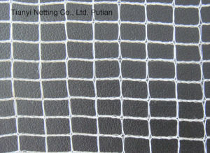 UV Protection Harvesting Net /60g pictures & photos