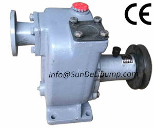 Big Flow China Marine Diesel Engine Cooling Sea Water Pump