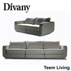 2016 New Collection Modern Collection Solid Wood D-28 Divany Collection Hot Sales Best Sales Livng Room Sofa pictures & photos