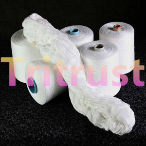 (2/30s) Spun Polyester Yarn for Sewing Thread pictures & photos