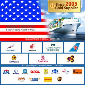 Professional Shipping Rates to Newark From China/Beijing/Tianjin/Qingdao/Shanghai/Ningbo/Xiamen/Shenzhen/Guangzhou pictures & photos