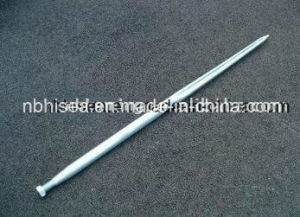 Farm Spear, Bale Spear in China pictures & photos