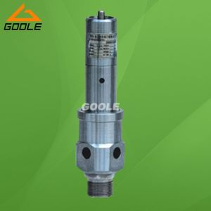 Air Compressor Pressure Safety Relief Valve (GAAQ-20) pictures & photos