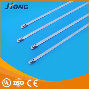 304 316 Self-Locking Stainless Steel Ss Cable Ties Size pictures & photos