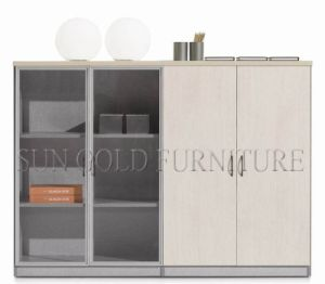 Modern Office Ikea Style Glass Door Small Filing Cabinets (SZ-FC071) pictures & photos