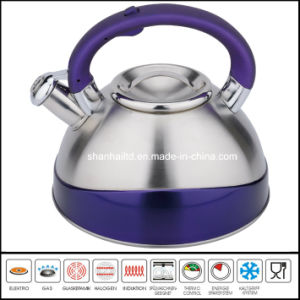 3L Color Stainless Steel Tea Kettle Cookware pictures & photos