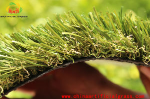 Evergreen Artificial Grass for Landscape with SGS Certification pictures & photos