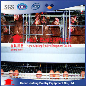 2017 Hot Sale Professional Automatic Poultry Farming Equipment for Chicken Coop pictures & photos