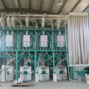 Wheat Flour Mill Machines for Sale (6FTF) pictures & photos