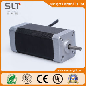 ISO9001 Certified Brushless DC Motor for Garden Instrument pictures & photos