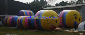 Amusement Inflatable Tunnel with Competitive Price (A782) pictures & photos