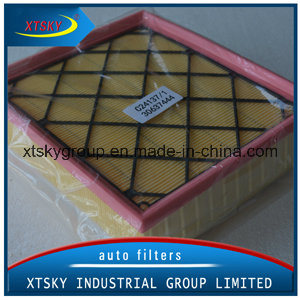 High Performance Auto Air Filter C24137/1 pictures & photos
