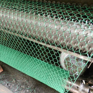 Hot Sale Galvanized Small Hole Chicken Wire Mesh pictures & photos