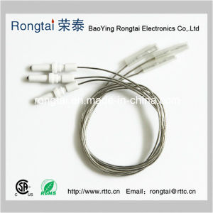 Ceramic Ignition Electrode for Gas Oven/Gas Cooker pictures & photos