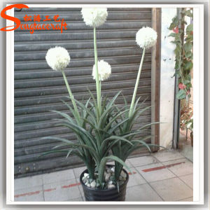Distinctive Design Hand Feeling Artificial White Ball Flower pictures & photos
