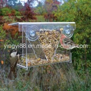 Hot Selling Acrylic Bird Feeder with Suction Cups (YYB-016) pictures & photos