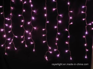 LED Curtain Decoration Lights Christmas Wedding pictures & photos