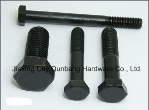 Hex Bolts (ASME B18.2.1 1/4′-2′ Gr. 2/5/8) pictures & photos