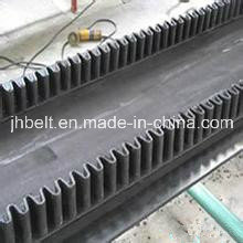 Raised Edge Conveyor Belt