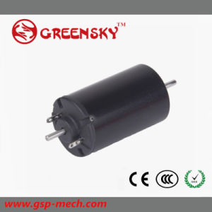 Europe Hot Sell DC Brush Coreless Gear Motor pictures & photos