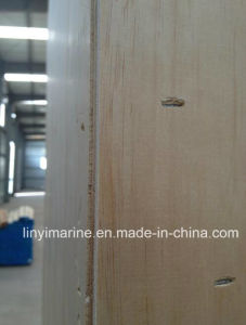 Plywood Box or Wire Bound Box. Heat Treatment pictures & photos