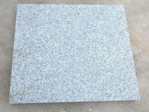 Light Grey G603 Grey Wall/Floor Tile Granite pictures & photos