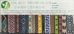 Polyester Jacquard Woven Tape 33-48 pictures & photos