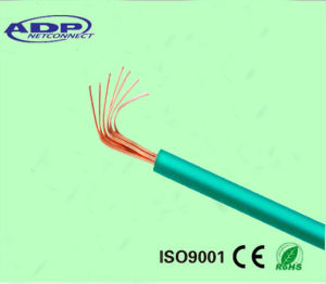 IEC Standard 300/500V Electric Cable Lighting Wire pictures & photos