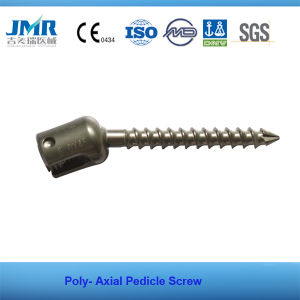 FDA Approved Spinal Internal Fixation Spinal Implant Spine Surgery Poly Axial Pedicle Screw pictures & photos